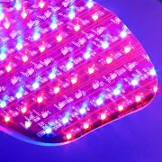 Light up your skin with the award winning LED phototherapy